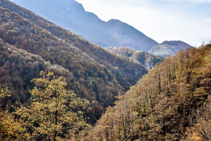 I colori dell'autunno sulle montagne che si ammirano dal Treno del Foliage