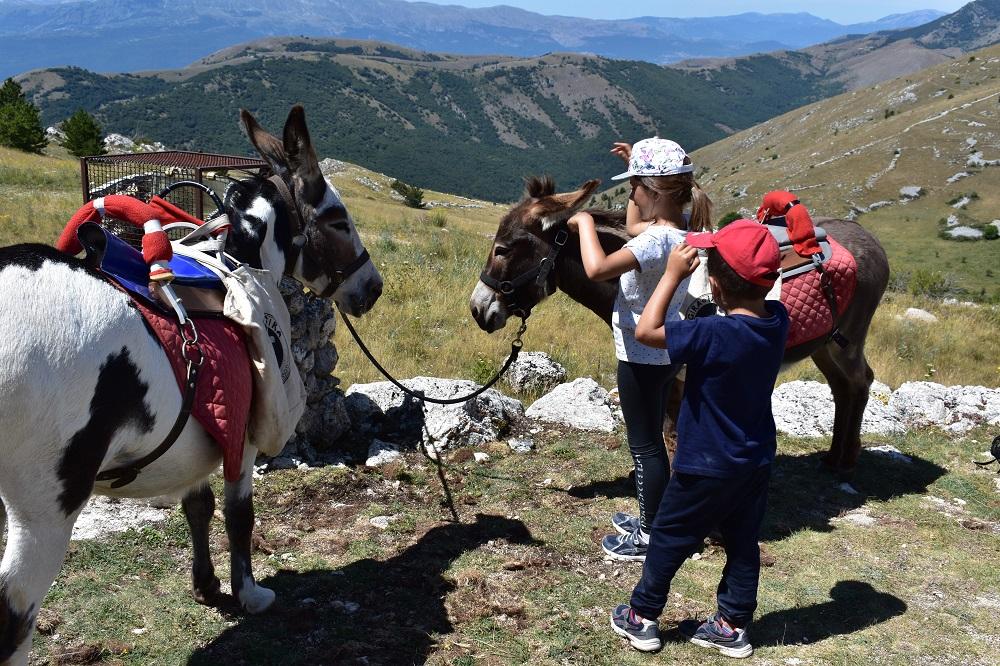 Trekking con asinelli nel Parco del Gran Sasso