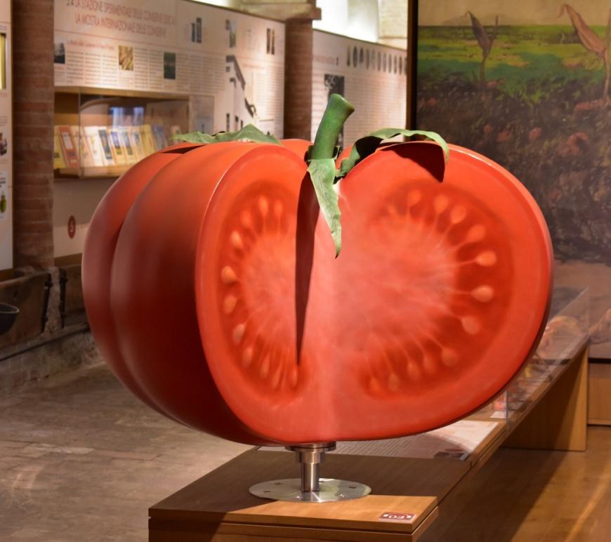 Museo del Pomodoro: Il Pomodoro Gigante collocato all'ingresso